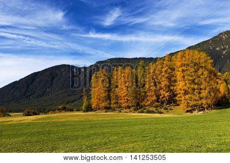 Autumn landscape with colorful larch trees. Mieminger Plateau Austria Tyrol.