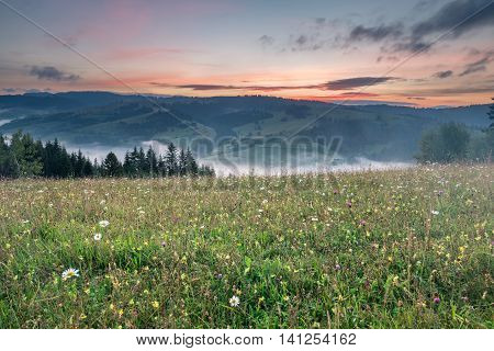 Glade With Flowers And A Mountain Range At Sunrise