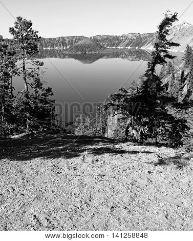 Wizard Island in Crater Lake is framed by two trees.