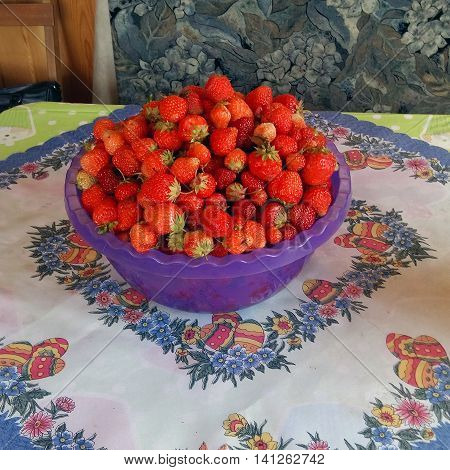 Purple bowl with strawberries is on the table