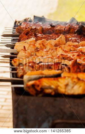 Different types of delicious meat and fish on skewers grilling during the summer picnic outdoors, vertical