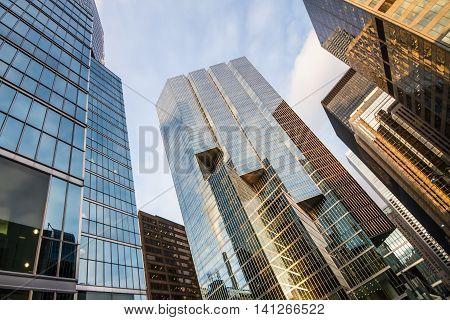 Toronto city glassed urban skyscrapers; urban skyline; business center of big city