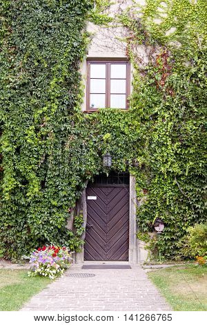 Wooden close door and green wall in Pieskowa Skala Palace - Poland.