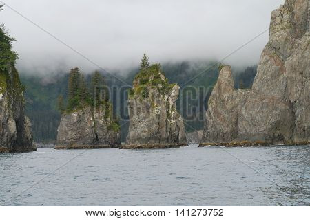 Chiswell Islands in the Kenai Fjords National Park, Alaska