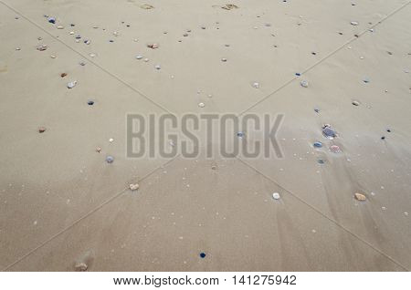 Beautiful sand background with little stones. Close up view beach sand background. Sandy texture with stones.. Brown sand. Background from fine sand. Sand background. Summer concept. Top view.