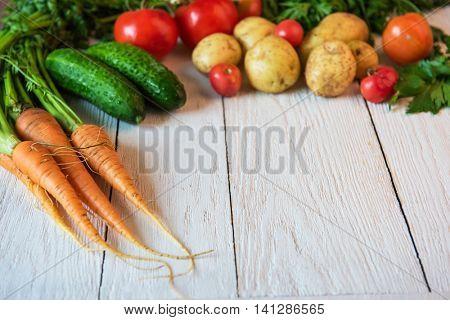 Close up of various freshly grown raw vegetables