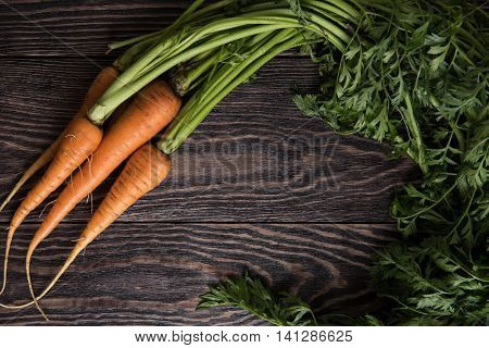 Freshly grown carrots on wooden table