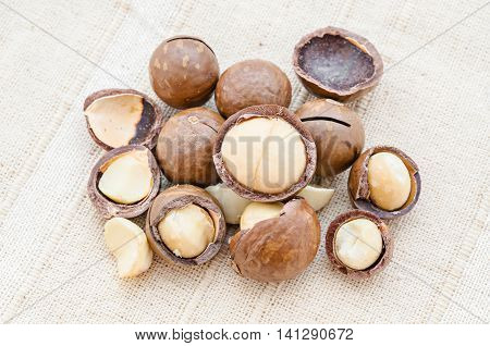The Cracked Macadamia nut on fabric background.