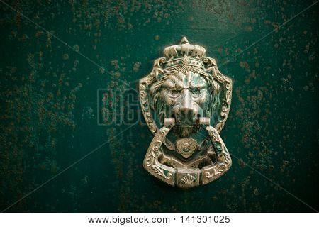 Lion door knock
