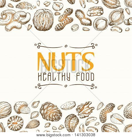 Vector background with nuts arranged horizontally. Vector illustration for your design