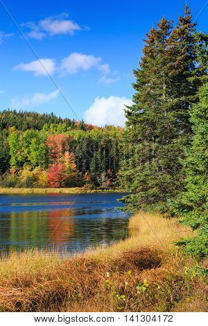 Fall foliage along a slow moving river in rural Prince Edward Island, Canada
