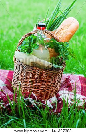 Picnic Basket Food Green Grass Outdoor Copy Space