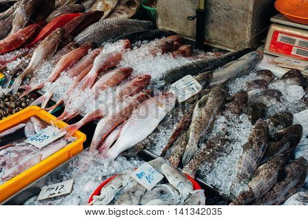 Fresh fish on the ice at the fish market of Penang. George Town Malaysia.