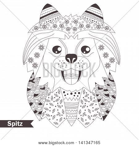 Spitz. Coloring book for adult, antistress coloring pages. Hand drawn vector isolated illustration on white background. Henna mehendi, tattoo, t-shirt sketch