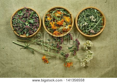 Dried herbs for use in alternative medicine.Herbal medicine phytotherapy medicinal herbs.For preparation of infusions decoctions tinctures powders ointments tea.Background green cloth