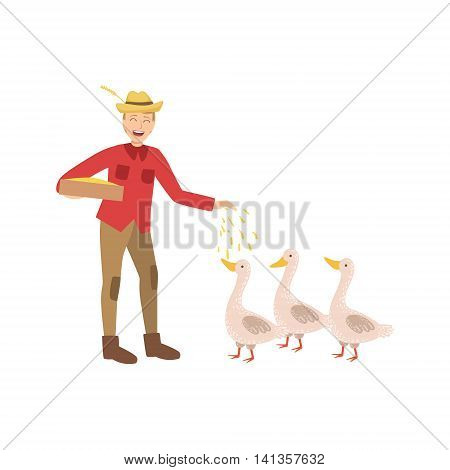 Man Feeding Three Geese With Seeds Simple Childish Flat Colorful Illustration On White Background