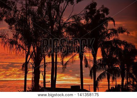BRISBANE AUSTRALIA - AUGUST 01 : Beautiful Qld Sunrise - August 1, 2016.