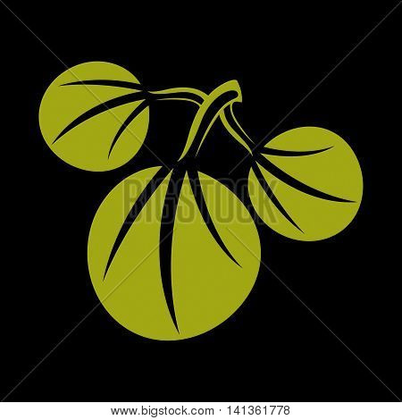 Three vector flat green leaves. Herbal and botany art symbol spring season stylized ecology icon.