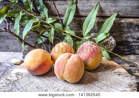 Peaches on cutting board on background the branch with leaves, stones and old burnt boards