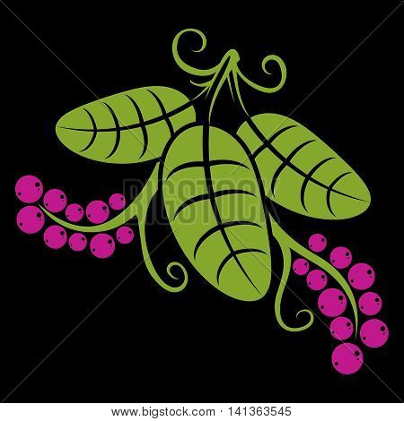 Stylized tree green leaf with tendrils and purple seeds botany and vegetarian design element.