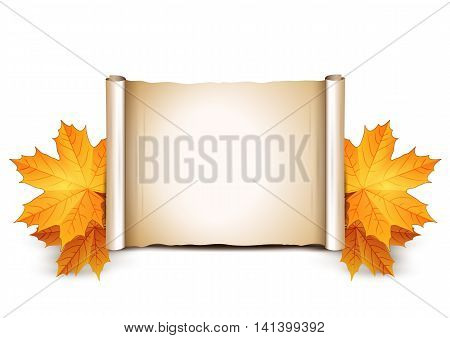 Autumn background with place for text. Old scroll and autumn yellow leaves isolated on white background. Vector illustration.