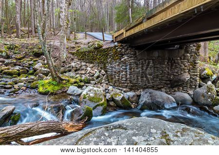 Bridge over forest creek with waterfalls. Great Smoky Mountains National Park Tennessee USA