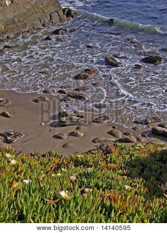 Spring. Ocean
