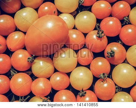 Cherry Tomato Vegetables Background Vintage Desaturated
