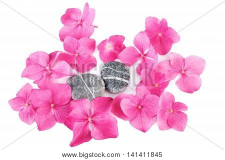 Spa stones with flowers natural pattern background. Flat lay.