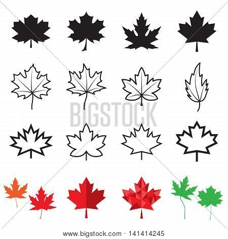 Maple leaf icons isolated on a white background. Vector illustration
