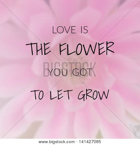 Inspirational quote & motivational background ...love is the flower you got to let grow