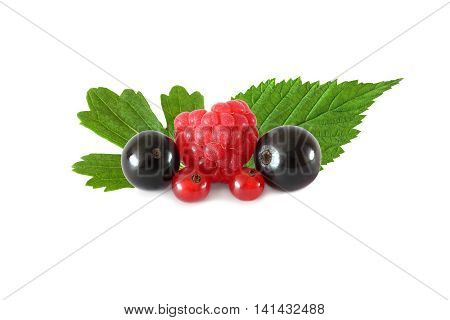 Various fresh fruits berries (raspberries black currants red currants) with leaves isolated on white background