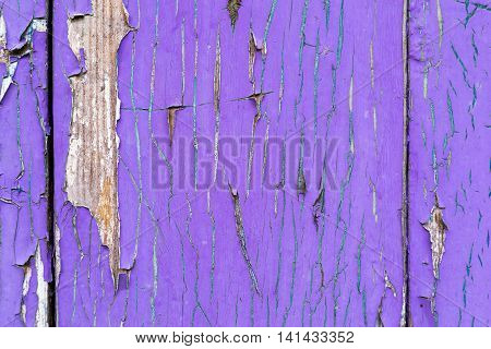 old texture of a peeling of the wooden board painted in the violet color for abstract background