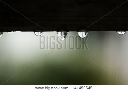 Rain drops hang from the roof with blur nature background.