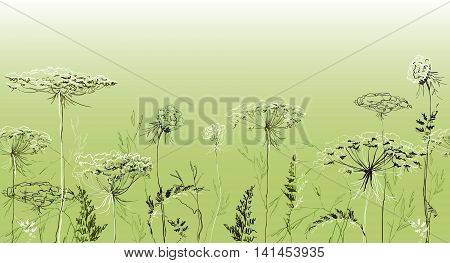 Green summer herbal seamless border with herbs and grass on green background. Herbal design for badges, banners, bio products package and eco designs. Vector illustration stock vector.