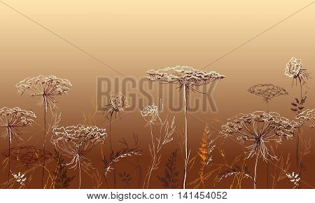 Herbal seamless border with herbs and grass on red orange autumn background. Herbal design for badges, banners, bio products package and eco designs. Vector illustration stock vector.