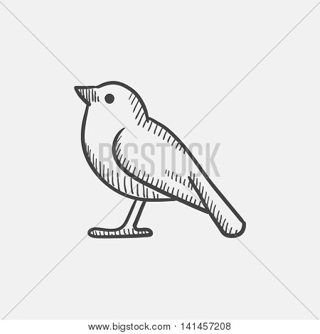 Bird sketch icon for web, mobile and infographics. Hand drawn vector isolated icon.