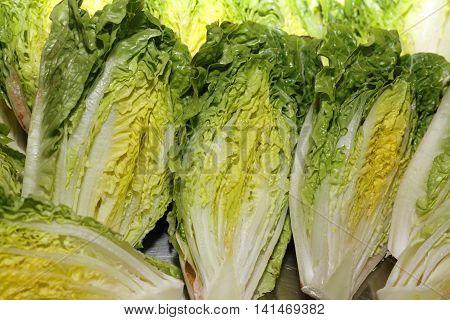Fresh organic hearts of Romaine Lettuce closeup