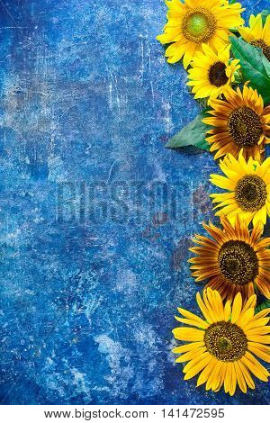 Blue Scratched Background With Sunflowers.