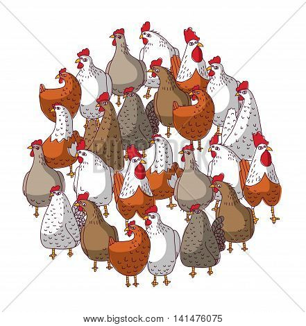 Birds color chicken group isolated on white. Color vector illustration. EPS8