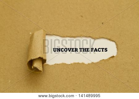 Uncover the facts written on torn paper