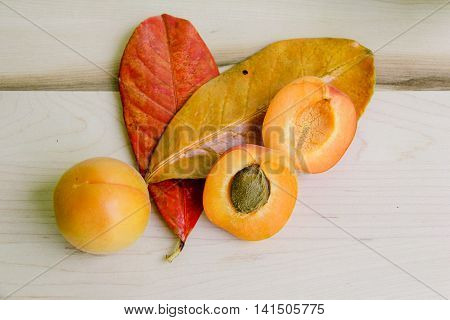 Apricot with leaves, one apricot open view.