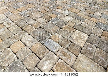 Brick Paver Patio in Garden Backyard Hardscape Closeup Background