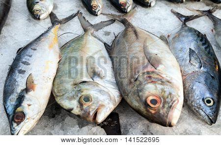 Sale Fish On Ice At Street Market