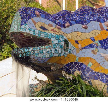 Head Mosaic Salamander