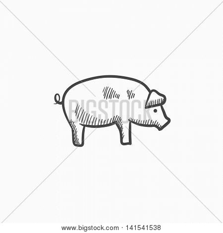 Pig sketch icon for web, mobile and infographics. Hand drawn pig icon. Pig vector icon. Pig icon isolated on white background.