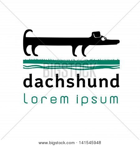 Vector hand drawn illustration with funny dachshund