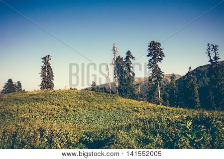 Mountains and forest trees Landscape in Abkhazia with blue sky Summer Travel serene scenic view