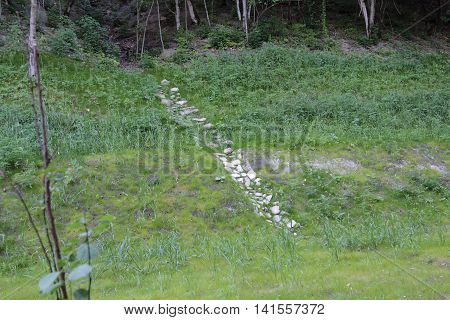 track disappearing into the mountain lined with stones among green grass