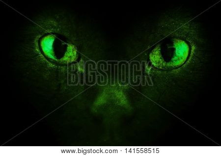 An illustration of the green scary demonic eyes.